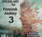 Кавер альбома DJ Kupidon – SPECIAL MIX for Voznyuk Aleksey 3 (2018)